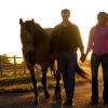 Обучение и позитивно отношение към коня – Част 1