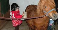 Децата в конюшнята- страх или радост…