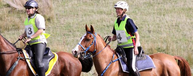 Как да започнем с дисциплината по конен спорт Ендюрънс