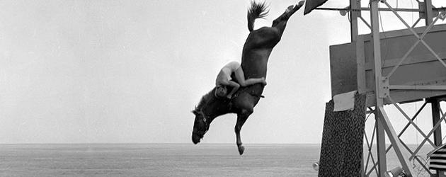 Гмуркащи се коне