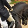 Принципът за сътрудничество между ездач и кон