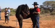 One-Rein Stop или аварийно спиране на коня
