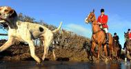 Парфорсен лов – на лов с коне