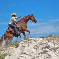 езда сред природата